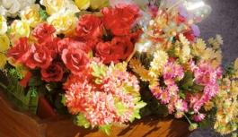Święto Kwiatów i Krzewów 2017